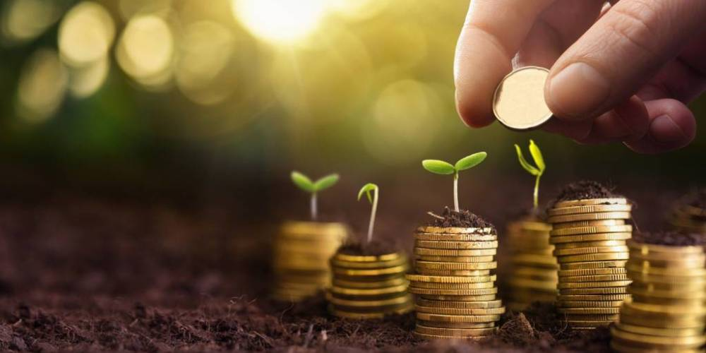 Reksadana Terproteksi atau Capital Protected Fund (CPF)