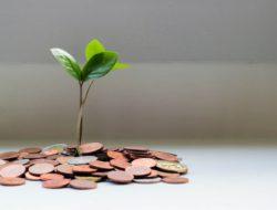 Tips Investasi Reksadana bagi Pemula Biar Dapat Cuan
