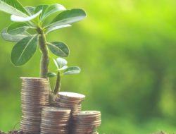 Berbagai Risiko Investasi Reksadana yang Wajib Dipelajari