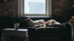 cara tidur berkualitas