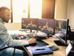Kenali Perbedaan Trader dan Investor Beserta Perannya