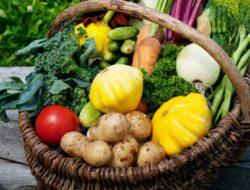 8 Makanan yang Perlu Dikonsumsi untuk Pola Hidup Sehat