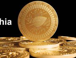 Ini Dia Prediksi Harga Chia Coin Market Cap dan Berita Terkininya 2021