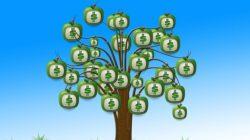 Lebih Baik Investasi Saham atau Reksadana?