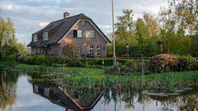 Tips Membangun Rumah Bernuansa Alam yang Nyaman dan Membuat Betah