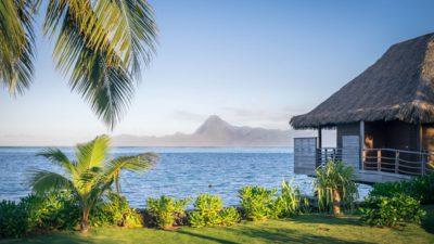 5 Tips Mendesain Rumah Tropis yang Indah