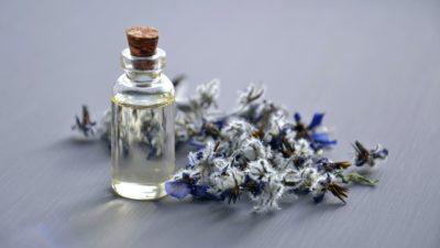 Peluang Bisnis Parfum di Era 2021 Dengan Beragam Nilai Keuntungannya